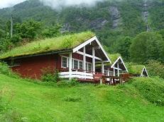 зеленый волшебный дом