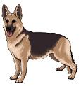 символ - международный день защиты животных